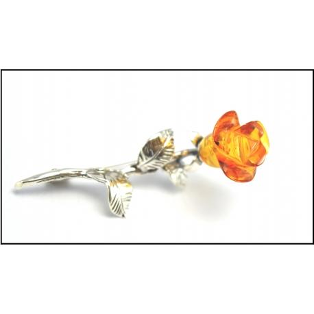 Róża koniak Kod:RCZ4